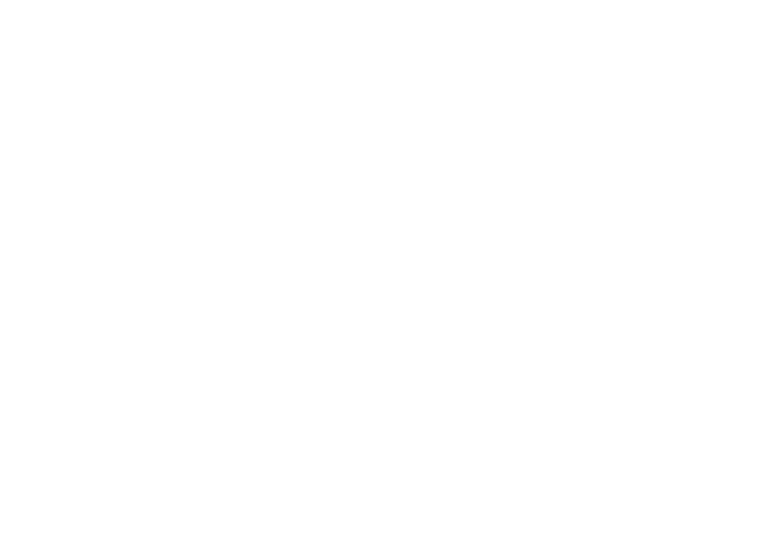 Gin experience