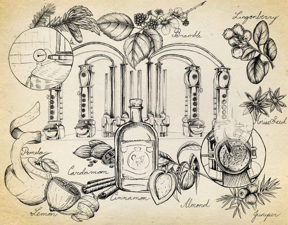 Storia del gin parte 2